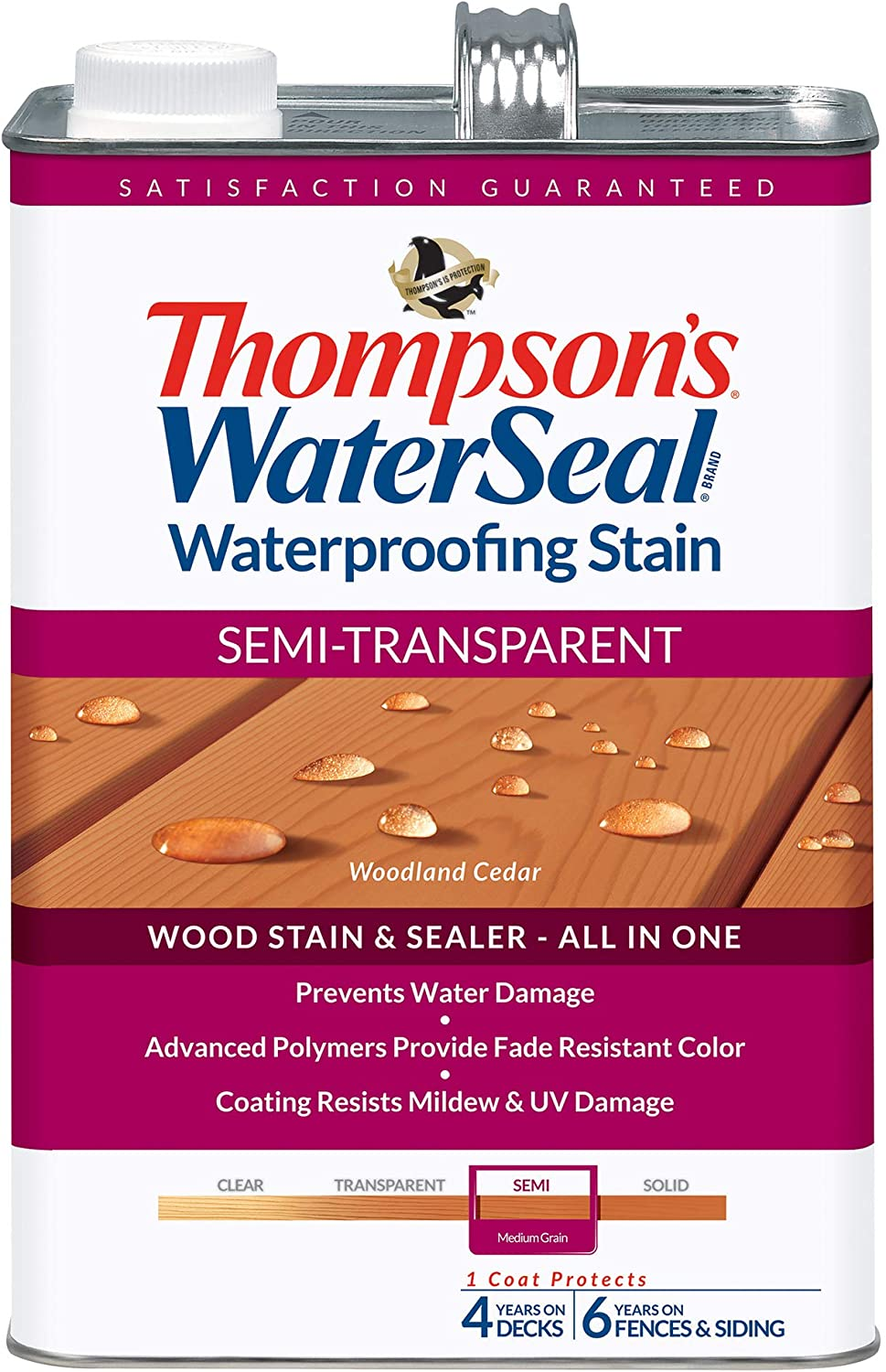 Thompsons Water-Seal Semi-Transparent Waterproofing Stain review